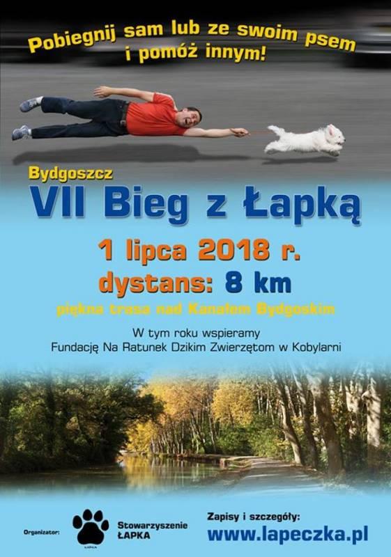 VII Bieg z Łapką