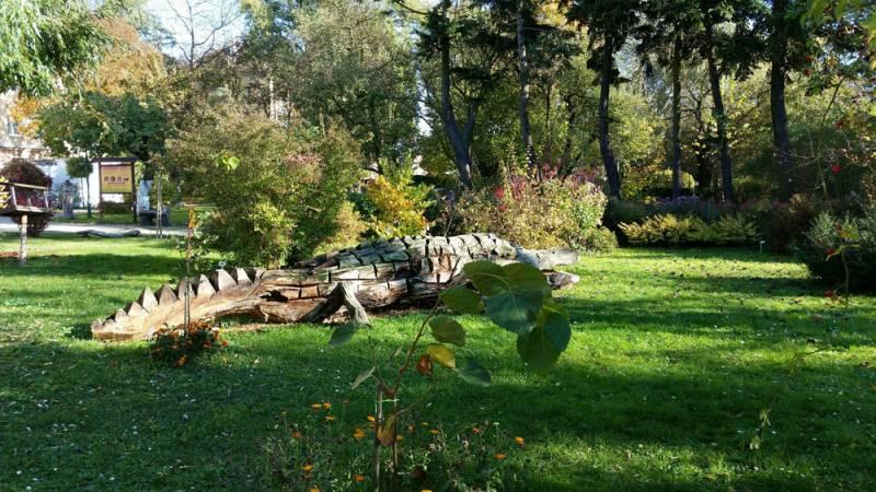 Ogrodnicza porada czwartkowa