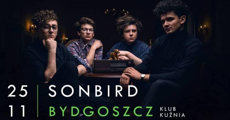 Sonbird