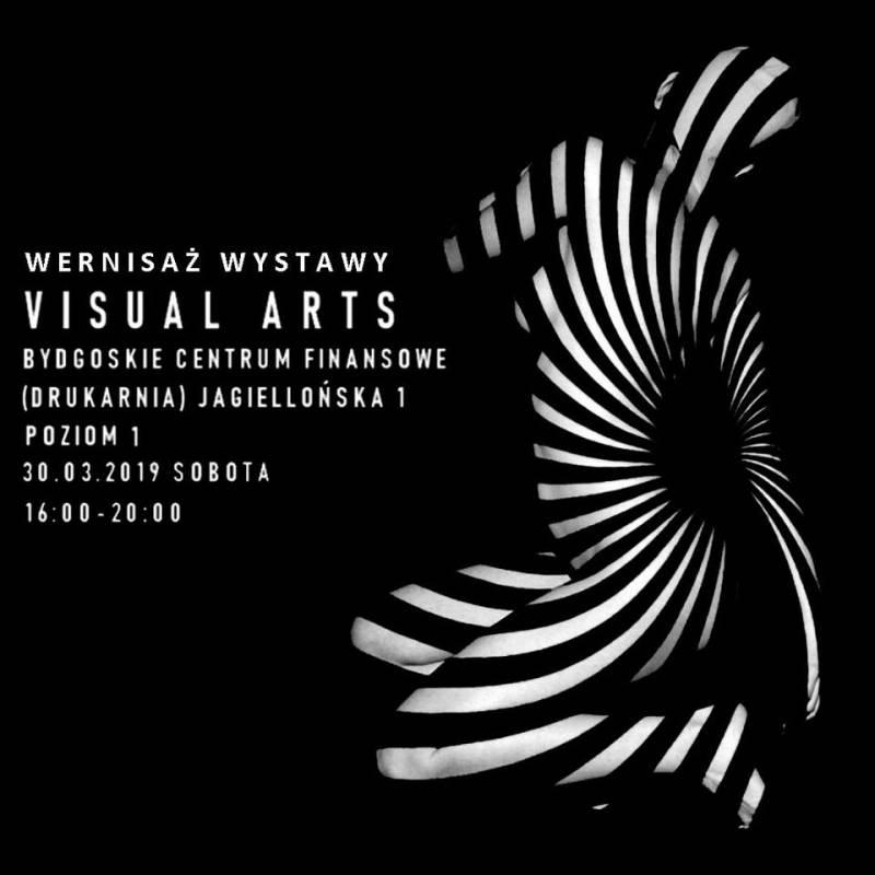 Wernisaż wystawy Visual Arts