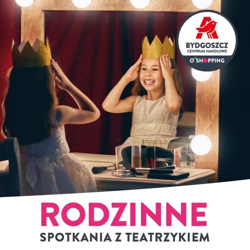 Teatrzyk pt. Podwórko Dyzia Piórko