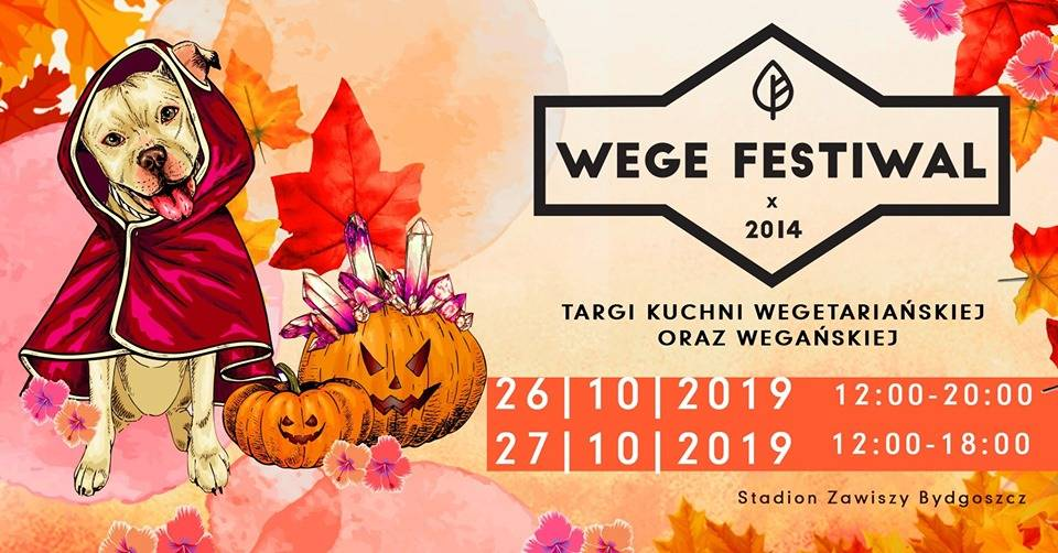 Wege Festiwal Bydgoszcz