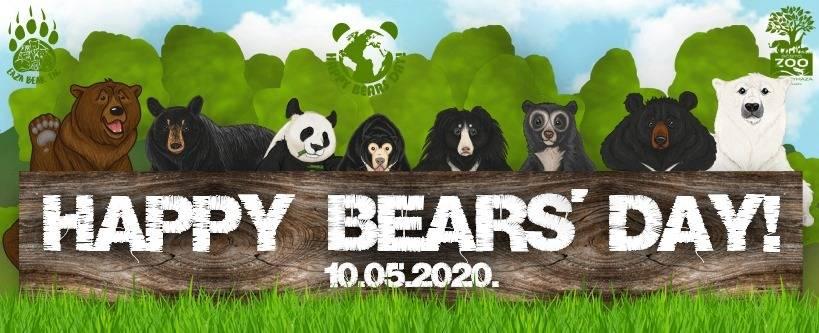 Happy Bears Day Międzynarodowy Dzień Niedźwiedzia