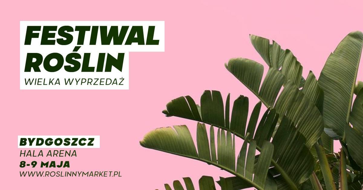 Festiwal Roślin - wielka wyprzedaż roślin doniczkowych